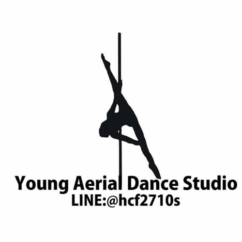 Young Aerial Dance Studio
